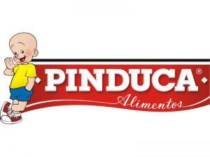 Logo Pinduca